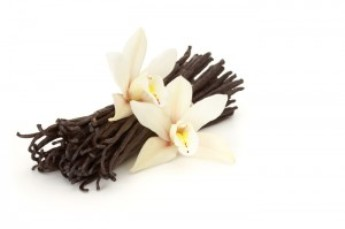 Calming Vanilla for your Home